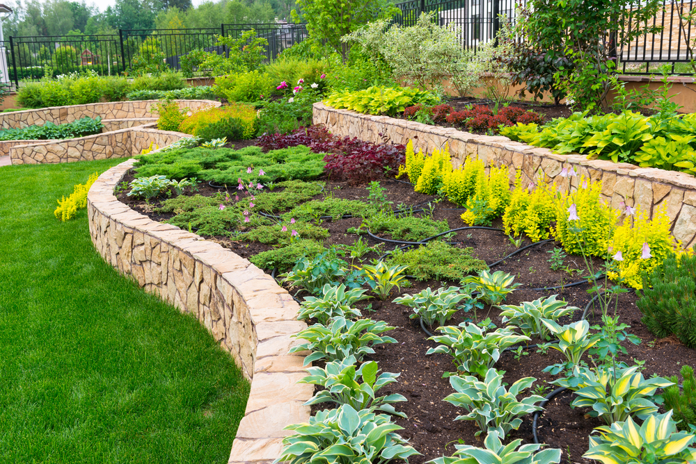 Compare the best local landscaping option near you for Local landscape designers